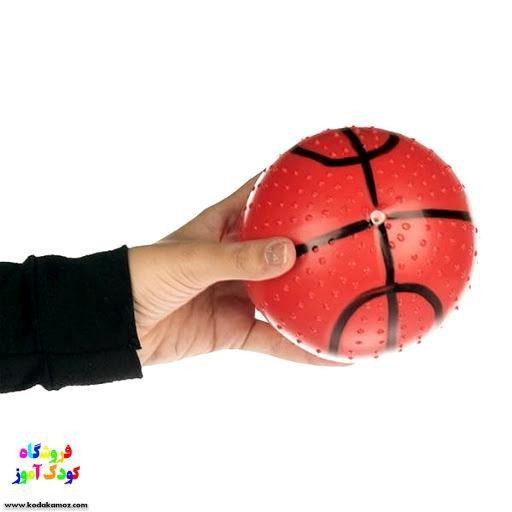 بسکتبال بزرگ خانواده